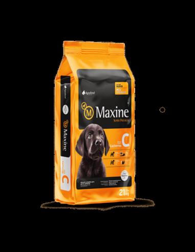 Maxine Cachorro 21 Kg