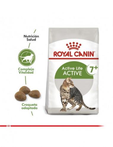 Royal Canin Golden Retriever Adulto 12 Kg