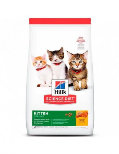 Hills Kitten Feline 1,58 Kg