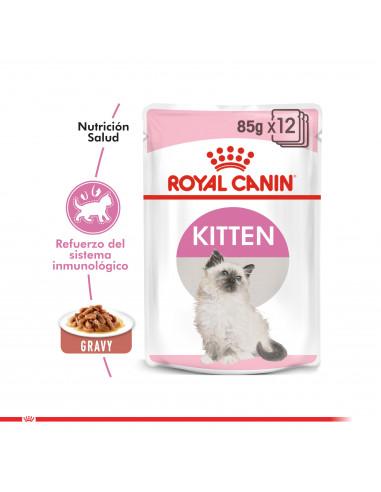 Royal Canin Gato Kitten Pouch Caja 12...