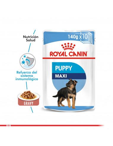 Royal Canin Maxi Puppy Pouch Caja 10...