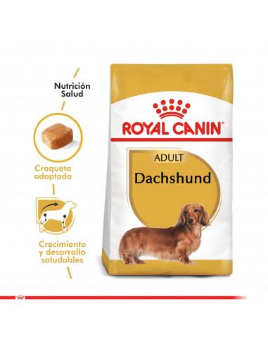 Royal Canin Dachshund Adulto 2,5 Kg