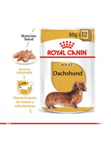 Royal Canin Dachshund Pouch Caja 12...