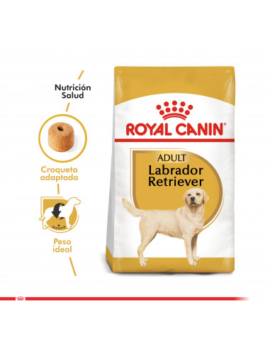 Royal Canin Labrador Adulto 12 Kg