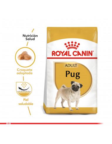 Royal Canin Pug Adulto 2,5 Kg