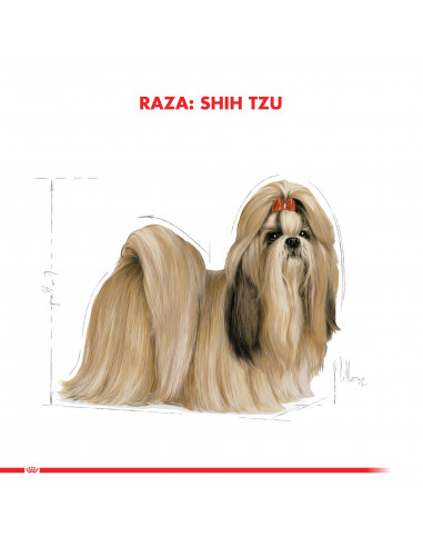 Royal Canin Shih Tzu Adulto 2,5 Kg