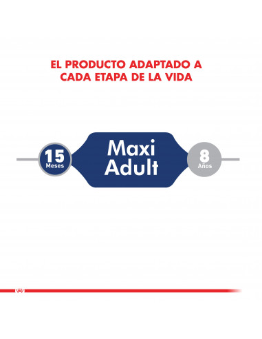 Royal Canin Maxi Adulto Pouch Caja 10...